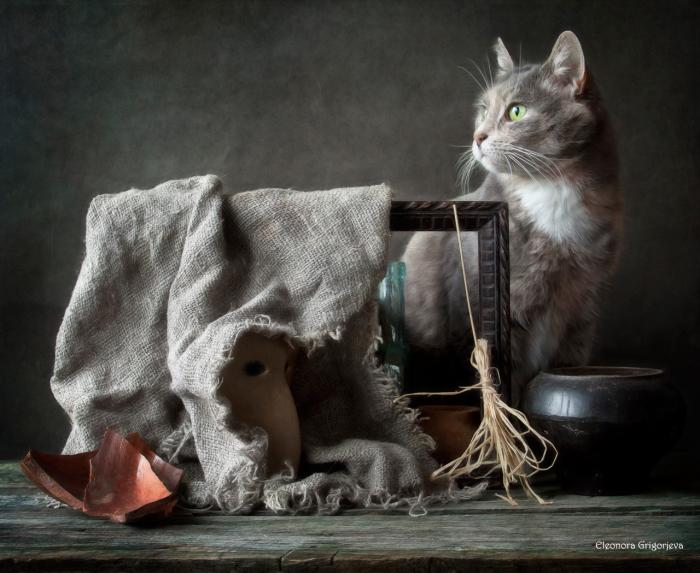 Ведьма. / Фото: Элеонора Григорьева.