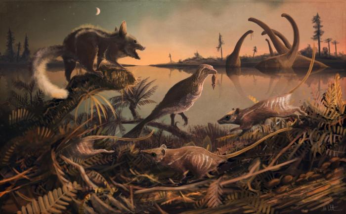 Ученые нашли крысообразных предков людей