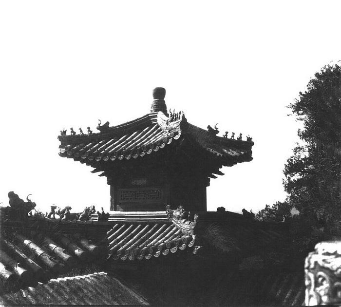 Крыша летнего дворца.