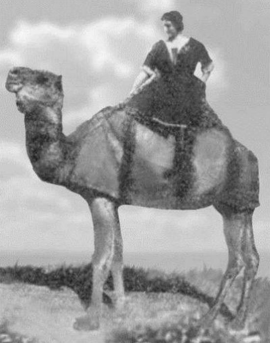Лариса Рейснер в Афганистане./ Фото: litobozrenie.com