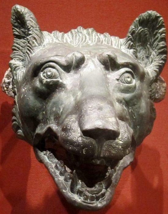 Бронзовая голова волка, Рим, 1 век н.э.