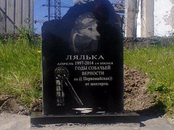 Памятник собаке Ляльке.