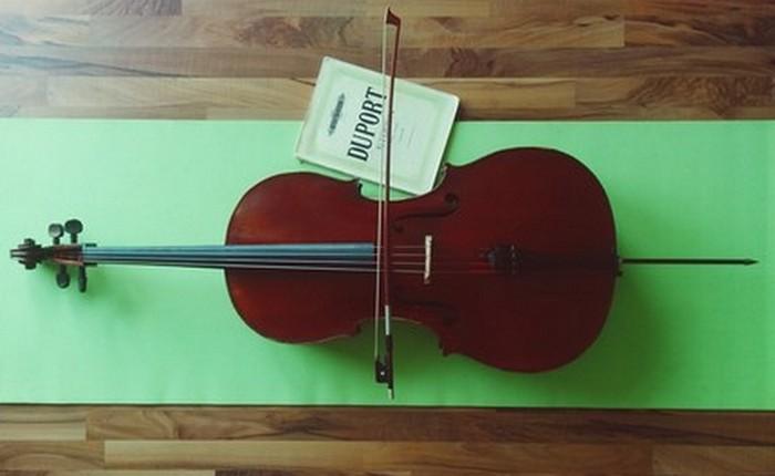 Уникальная виолончель Страдивари «Duport».