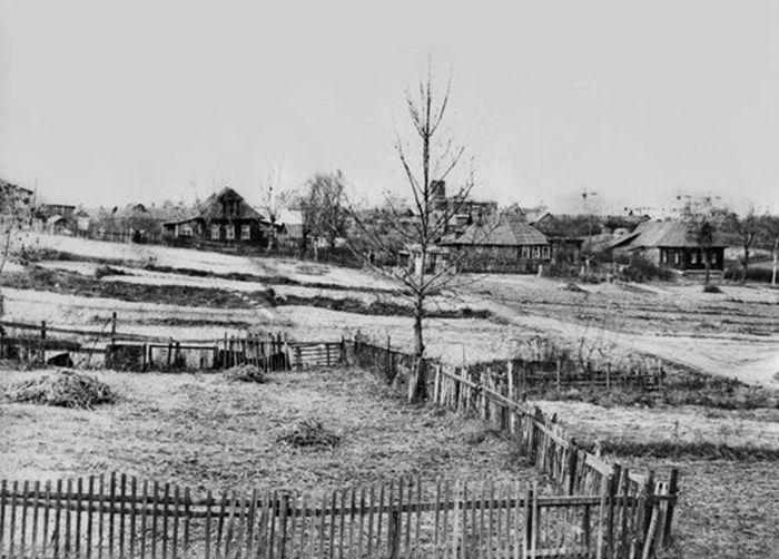 Пасторальный пейзаж в Дегунине.