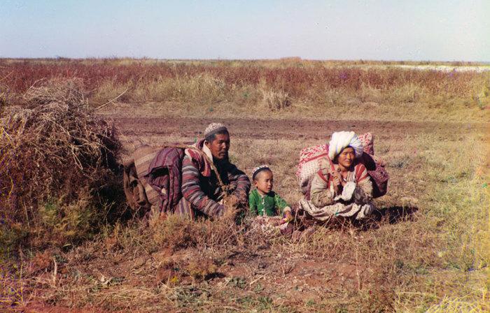 Кочевые киргизы в степи.