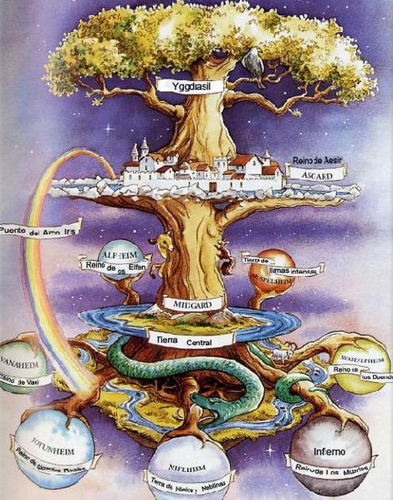 Трицентричная структура дерево Иггдрасиль./фото: liveinternet.ru