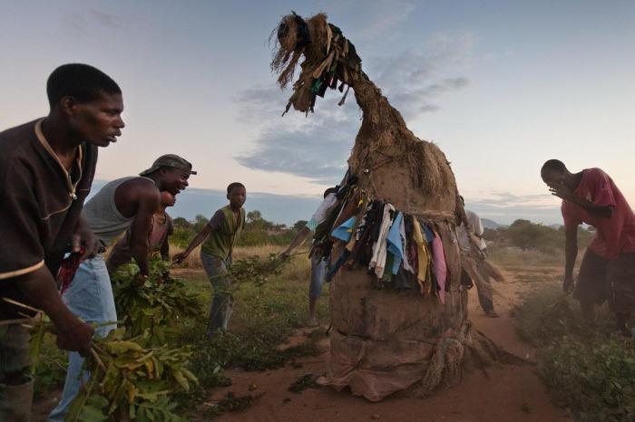 Ньяу-единорога (Зиньяу ) изображают несколько человек внутри зверообразной конструкции. Такой тип ньяу символизирует древних животных, сосуществовавших в мире с человеком до того, как он научился добывать огонь.