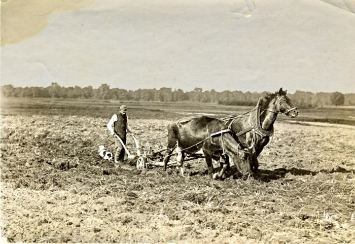 Пахарь в поле. 1907 год.