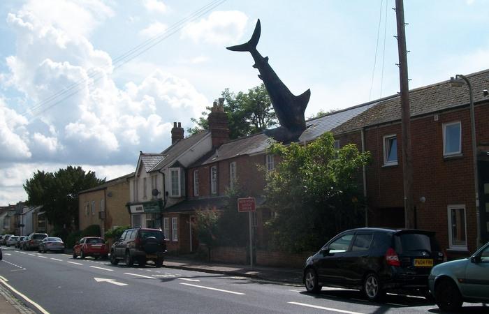 Хедингтонская акула. | Фото hdimagegallery.net