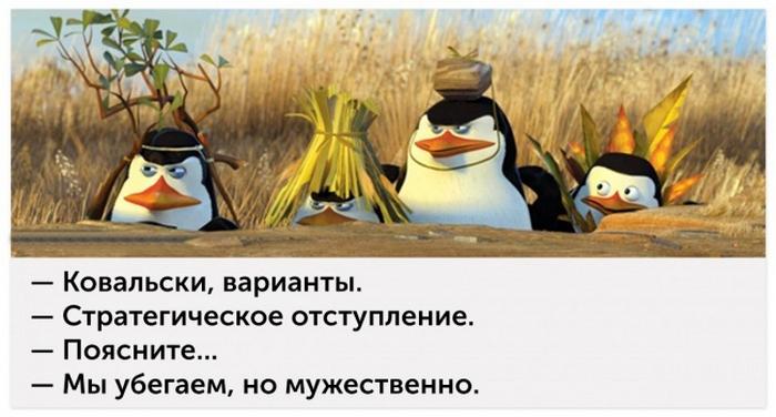 http://www.kulturologia.ru/files/u8921/panda-kf-12.jpg