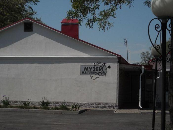 Дом-музей Надежды Плевицкой в её родном селе Винниково.