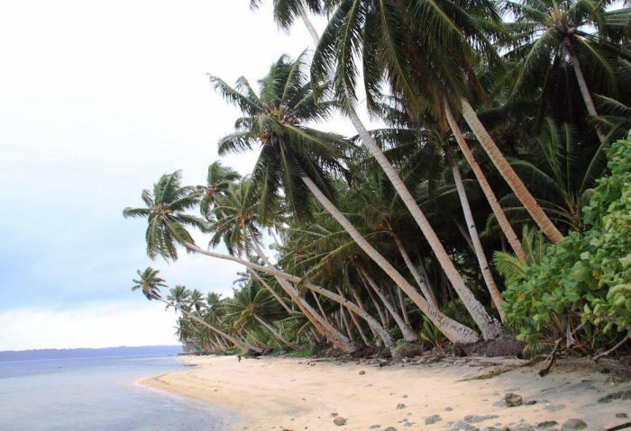 Острова Яп - острова в Тихом океане. Входят в состав штата Яп Федеративных Штатов Микронезии.