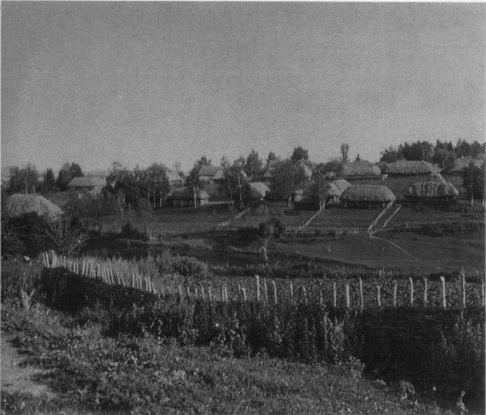 Деревня Ясная Поляна. Фотография «Шерер, Набгольц и К0». 1892 г.