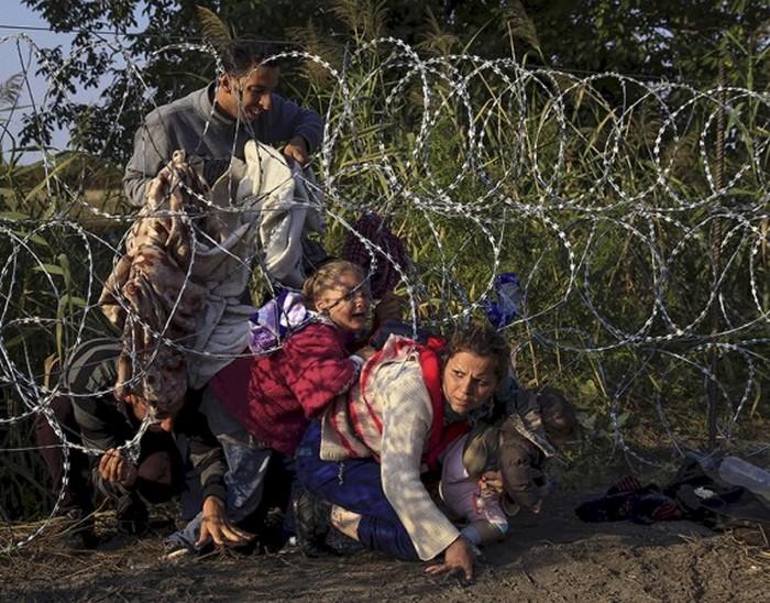 Сирийские мигранты пробираются под колючей проволокой из Сербии в Венгрию. (Thomson Reuters / Бернадетт Сабо - 27 августа 2015)