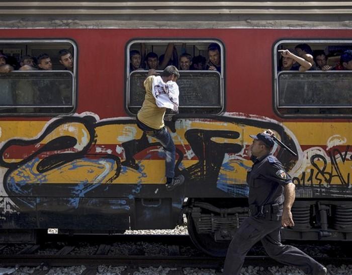 Полицейский пытается остановить беженца, пытающегося забраться в поезд через окно. Вокзал Гевгелия в Македонии, недалеко от границы с Грецией. (Thomson Reuters / Стоян Ненов - 15 августа 2015)