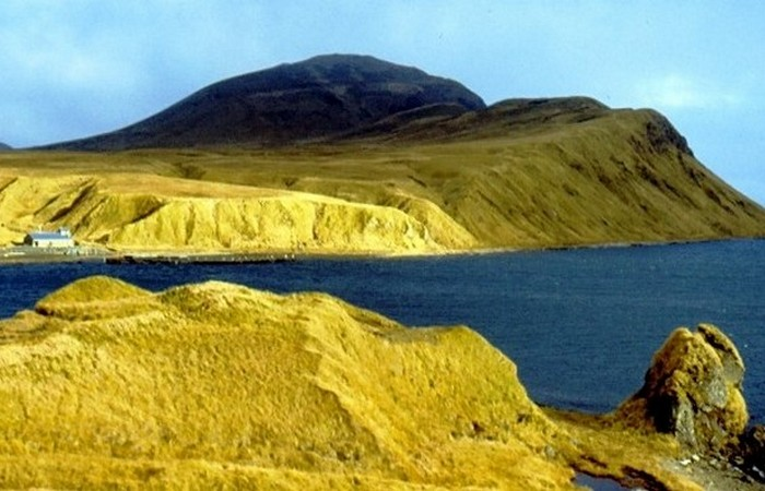 Одноименный город расположен на острове Адак.