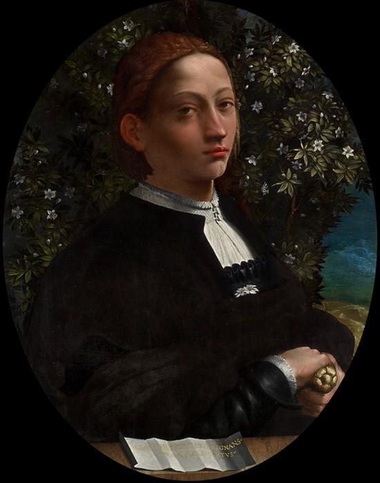 Dosso Dossi, Портрет Лукреции Борджиа, герцогиня Феррары. / Фото: qguys.com