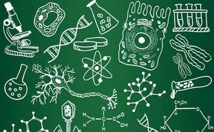 Биология для школьников и их родителей.