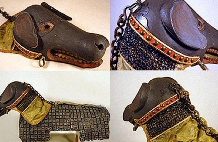 Бронированная собака. / Фото: listverse.com
