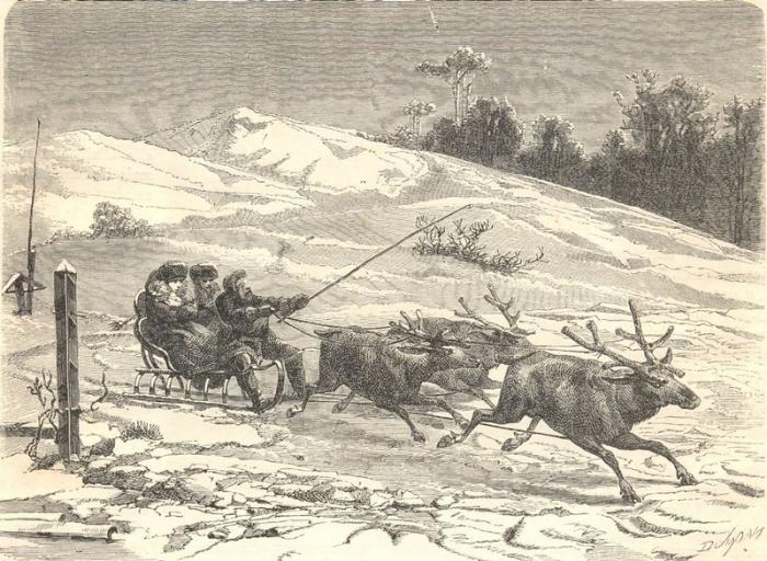 Сибирь, олени сани...