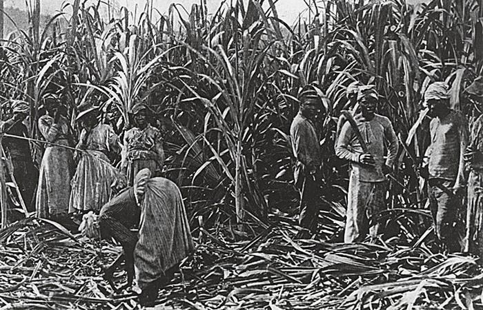 На обычной плантации американского юга в среднем работало менее 100 рабов.