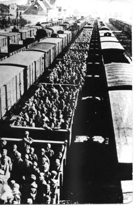 Пленных красноармейцев везут в шталаг.