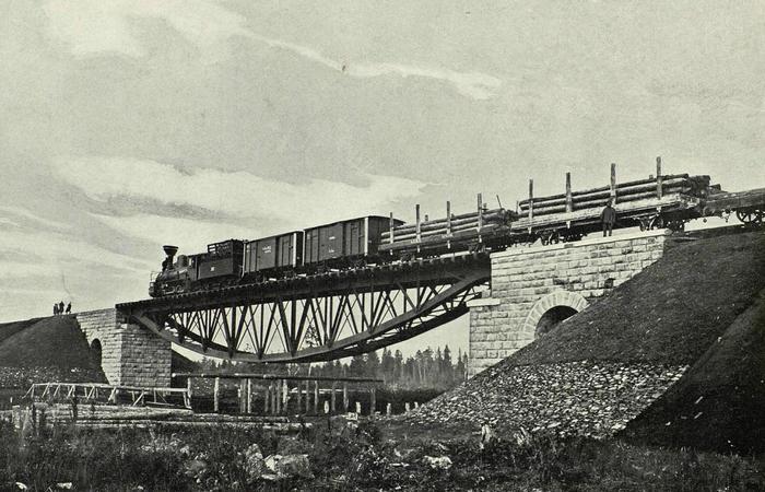 Оригинальный мост. /фото:medicine.axipro.ru