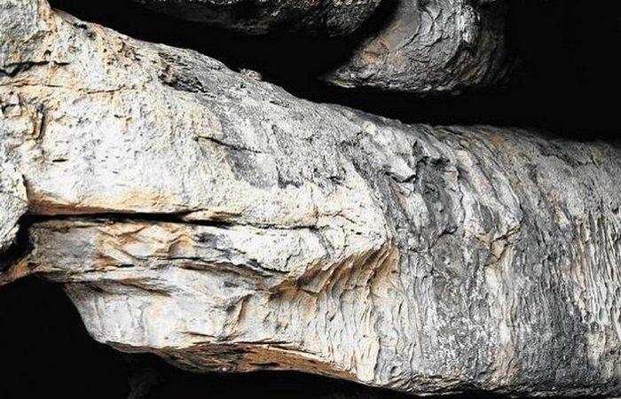 Алтарь Каменного питона.
