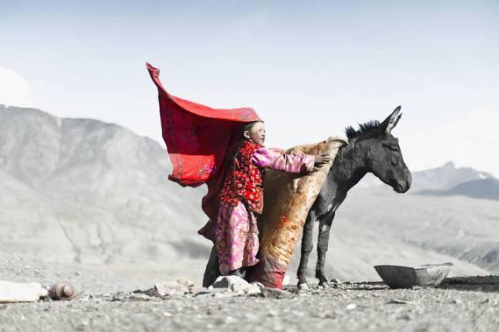 Девочка и ослик.