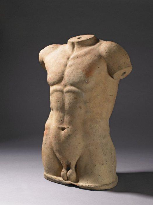 Терракотовая модель мужского торса.