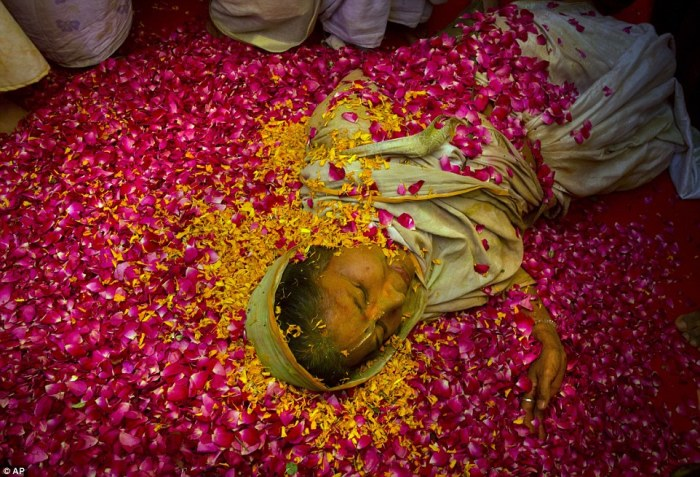 Белая вдова, лежащая на лепестках роз, во время праздника холи.