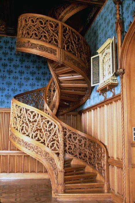 Винтовая лестница из цельного ствола дерева.