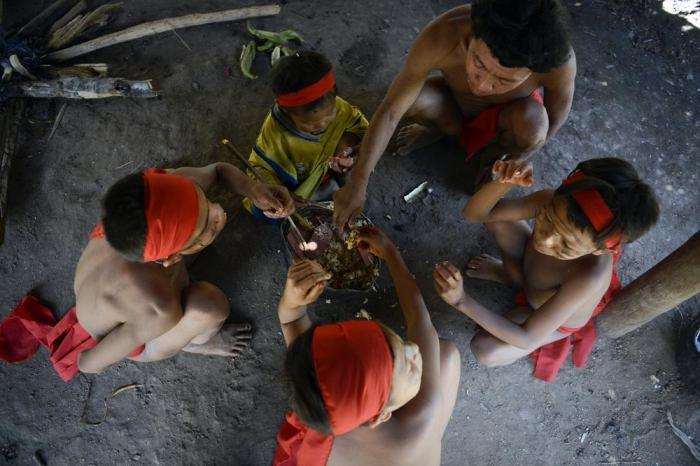 На протяжение последних 11 тысяч лет яномами почти не контактировали с внешним миром.