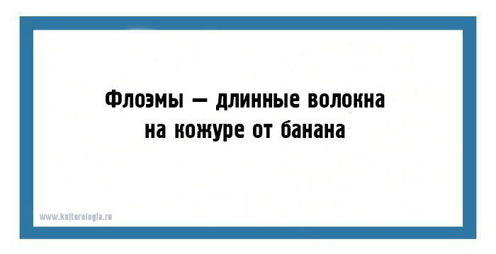 http://www.kulturologia.ru/files/u8921/z2-best-04-19.jpg