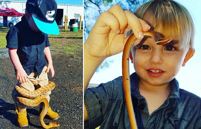 Заклинателю змей из Австралии всего 2 года