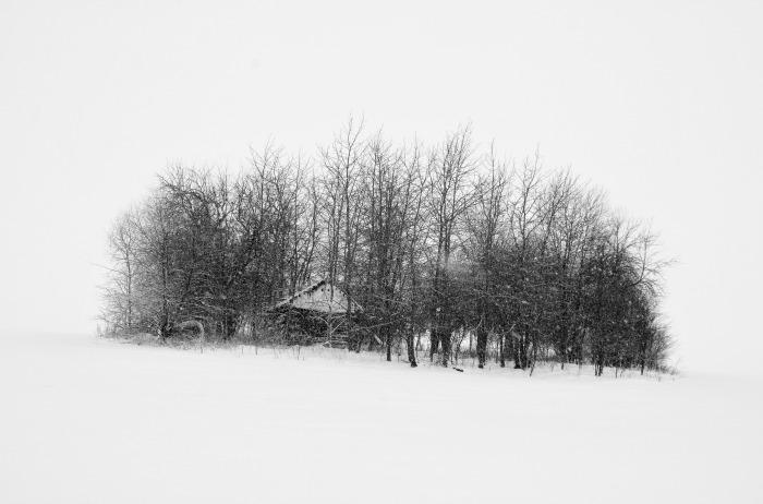 Рай. / Фото: Василий Васильков.