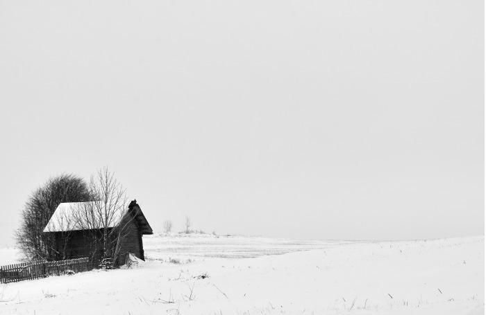 Монохромный зимний пейзаж. / Фото: Василий Васильков.