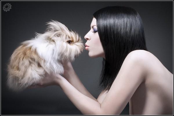 Мы любим кроликов, а они любят нас