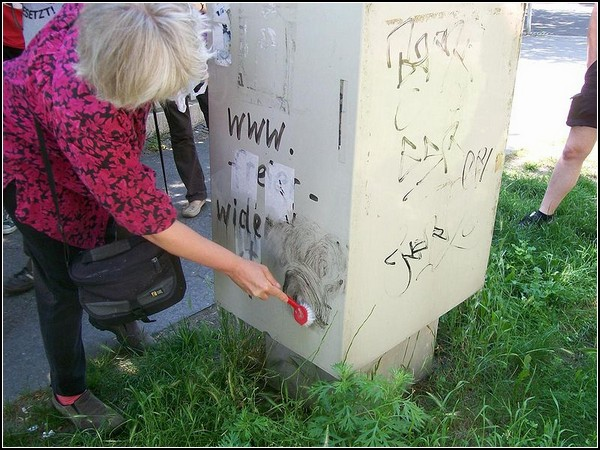 Бабушка-антифашист воюет с граффити