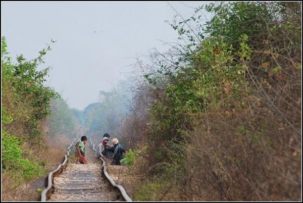 Кривые рельсы не помеха камбоджийскому туристическому поезду