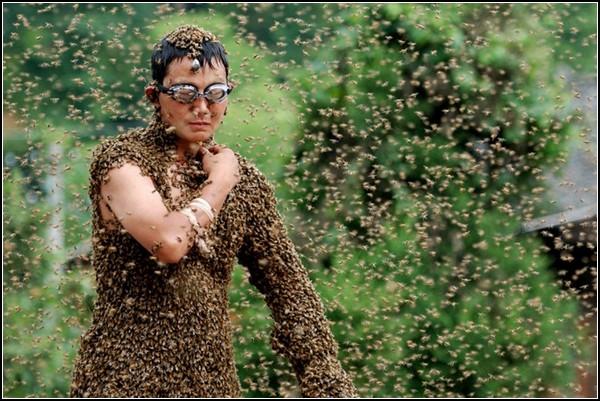 Пчела и человек. Необычный чемпионат в Китае