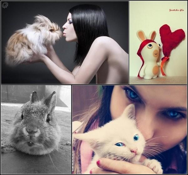 Любовь и кролики: подборка фото и картинок