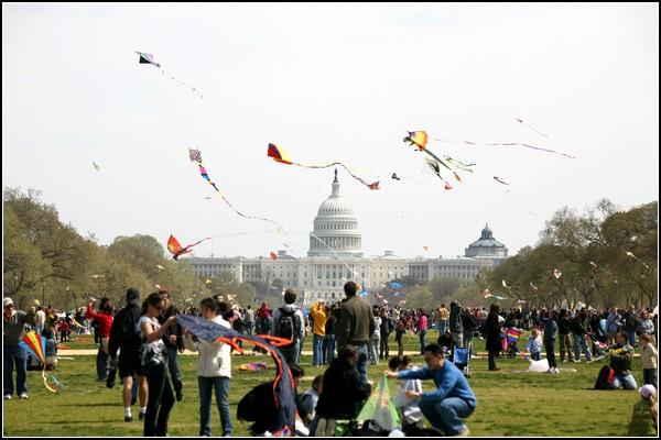 Змеиный полет. Воздушные змеи на фоне Капитолия