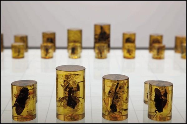 Тирания шахматного поля: мухи в янтаре