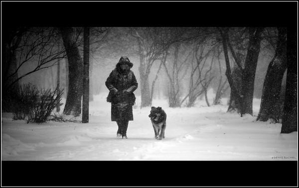 Собачья жизнь - друг человеческой жизни