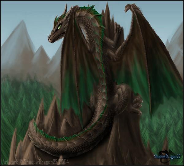 Мир драконов: стихия земли