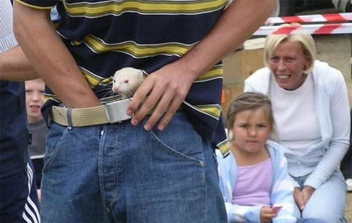 Самый опасный спорт: удерживание хорька в штанах