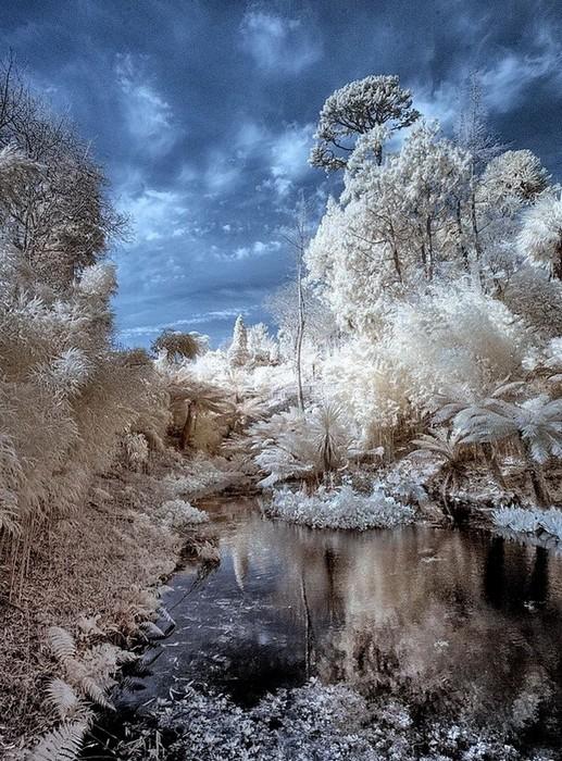 Забытый сад Хелигэн зимой