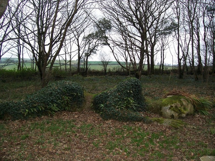 Забытый сад Хелигэн: растительная скульптура осенью