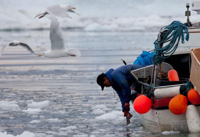 Рыбная ловля - самое популярное занятие в Гренландии